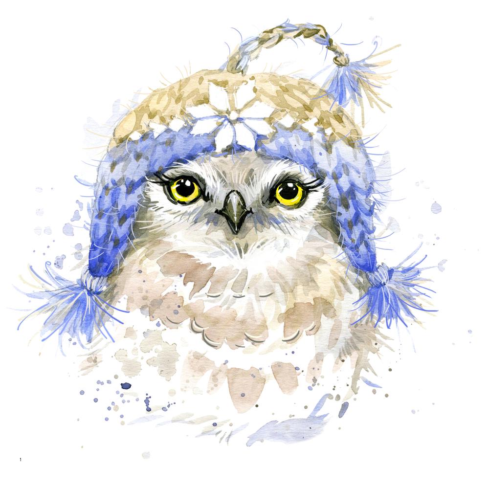 Snowy Owl Knits